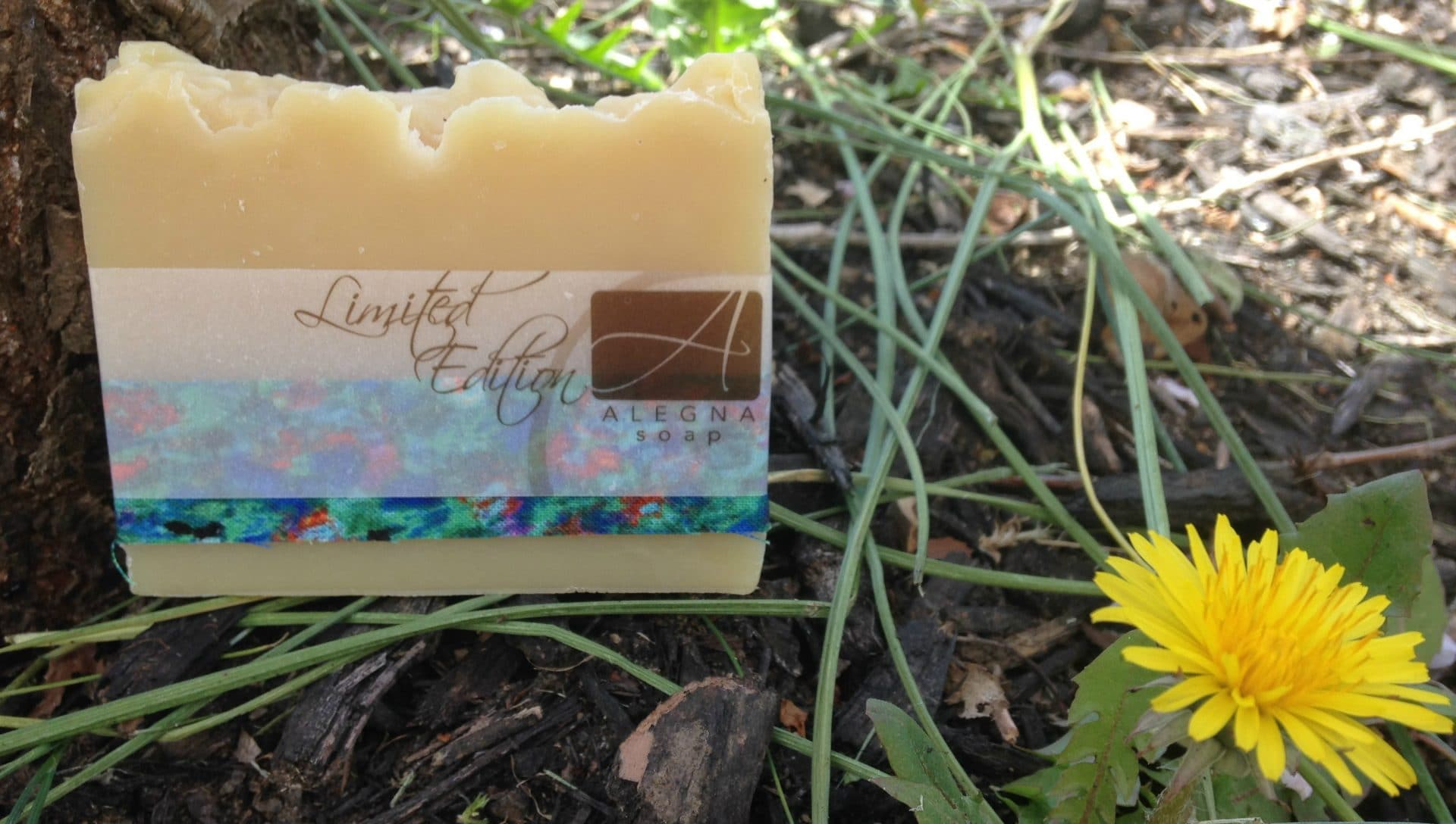 Alegna Soap® Patchouli Clove Soap