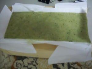 Alegna Soap® Seaweed Seawater soap