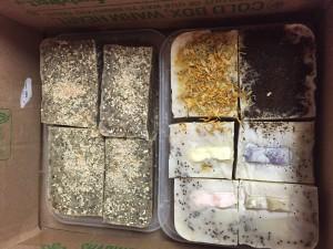 Soshanna soap